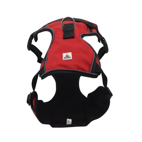 Harness Front Range Large Red