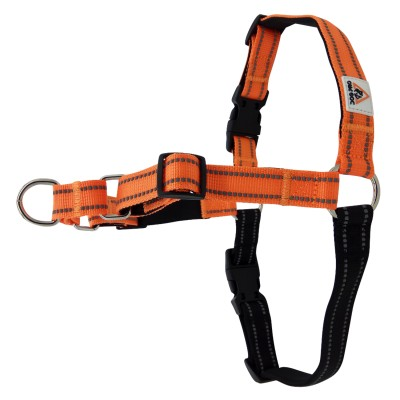 Harness Soft Training M/L Orange