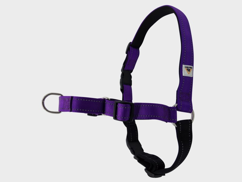 Harness Soft Training M/L Purple