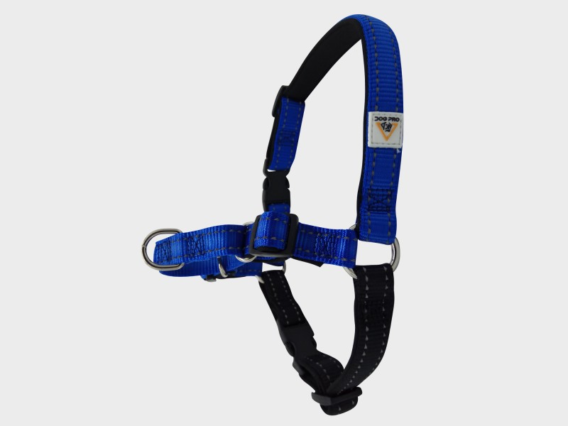 Harness Soft Training Small Blue