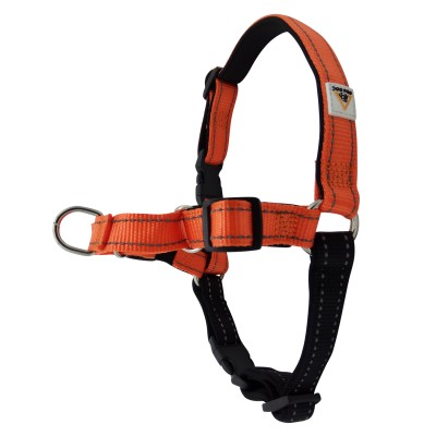Harness Soft Training Small Orange