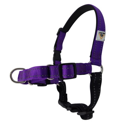 Harness Soft Training Small Purple