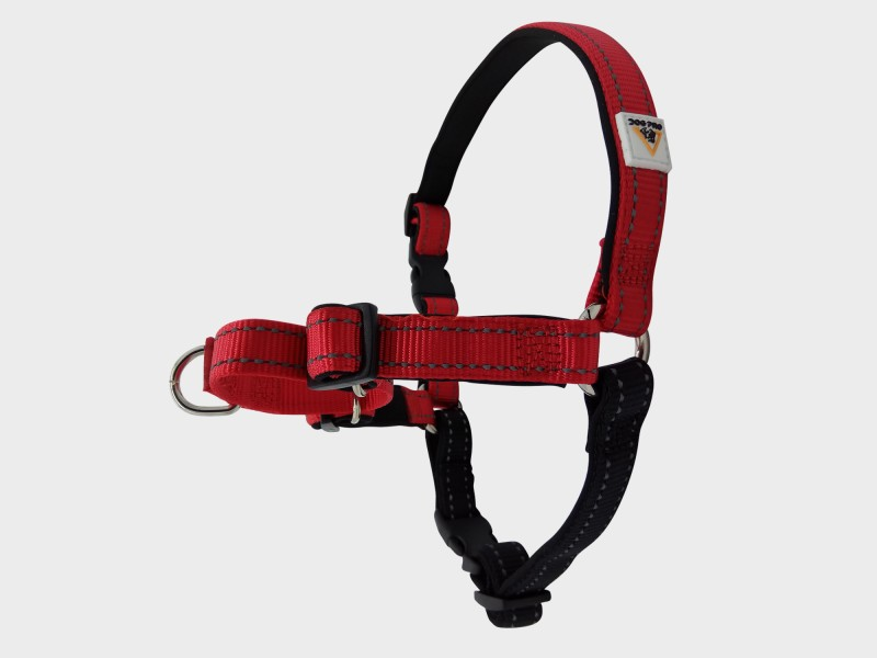 Harness Soft Training Small Red