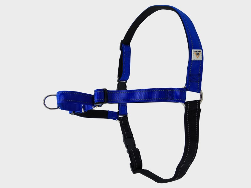 Harness Soft Training Extra Large Blue