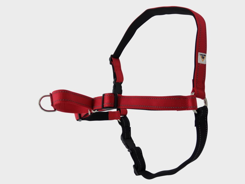 Harness Soft Training Extra Large Red