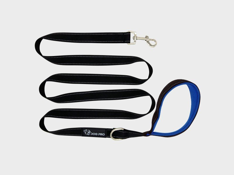 Training Leash 2m with Blue Padded Handle