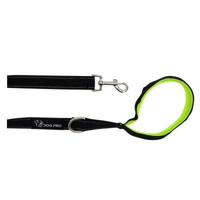 Training Leash 2m with Green Padded Handle